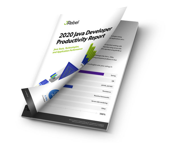 2020 Java Developer Productivity Report